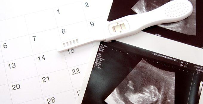 Cómo llevar un calendario de fertilidad - Apréndete