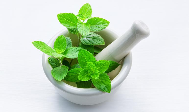7 beneficios del aceite de menta - Apréndete